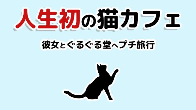 猫カフェぐるぐる堂